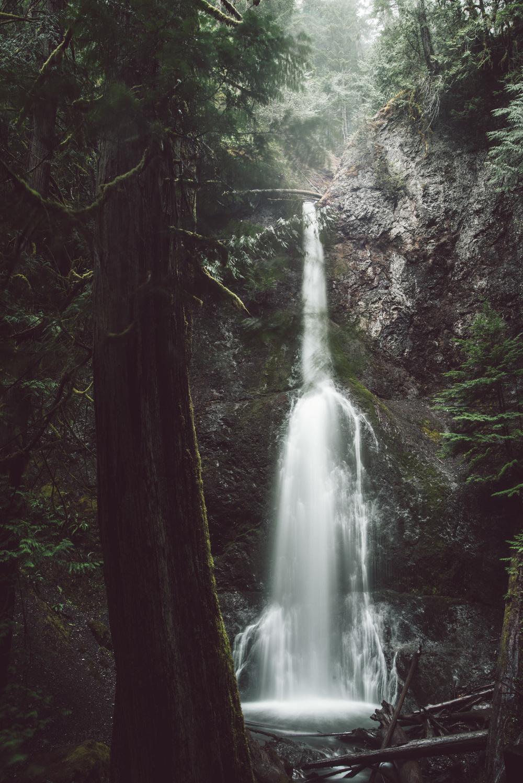 Seattle-5603.jpg
