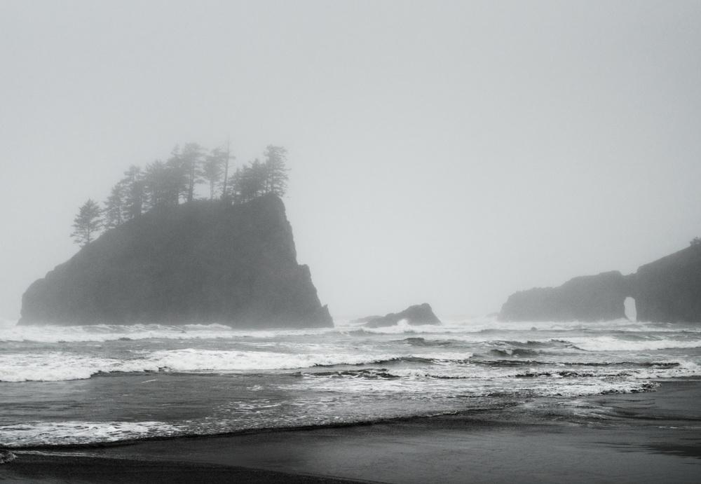 Seattle-6018.jpg
