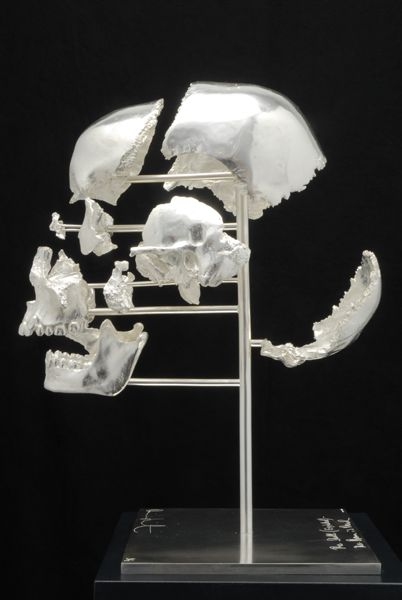 Damien Hirst    Skull Exploded - The Dream is Dead • 2007   Prata de Lei   Edição: 12   37,3 x 23,4 x 29 cm