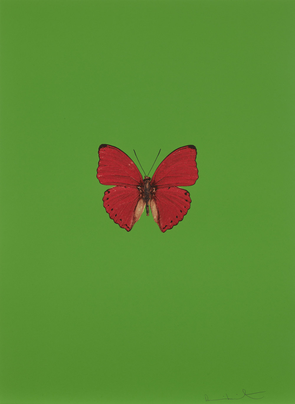 Damien Hirst   It's a Beautiful Day (verde) • 2013 Gravura polimerizada Edição: 55 66.5 x 49 cm