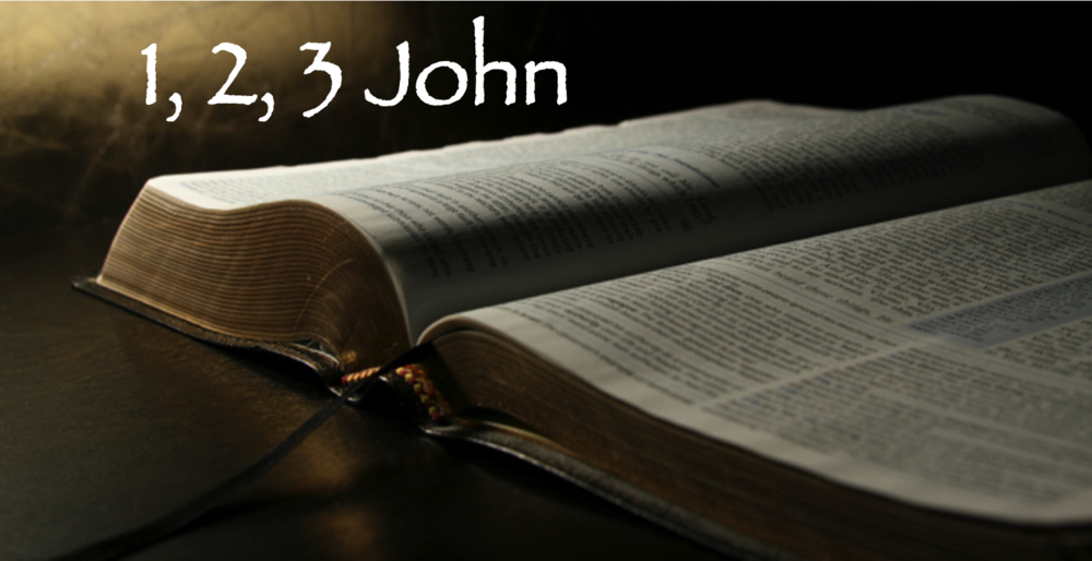 "John, the disciple whom Jesus loved, wrote the books of I, 2, 3 John.  The message is clear that ""we should love one another."" (1 John 3:11)  ""Let us love one another, for love comes from God."" (1 John 4:7) ""This is how God showed his love among us: He sent his one and only Son into the world that we might live through him.  Since God so loved us, we also ought to love one another."" (1 John 4:9,11)  Join us as we not only learn about God's love, but as we also strive to show God's love to each other in our prayer and care time, as well as in our words and actions toward each other.  We love because He first loved us."