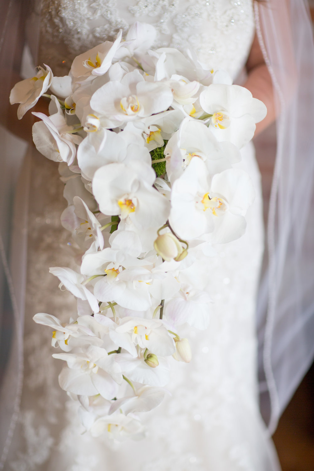 Photo:  OMG Photography  Bouquet:  Country Florist