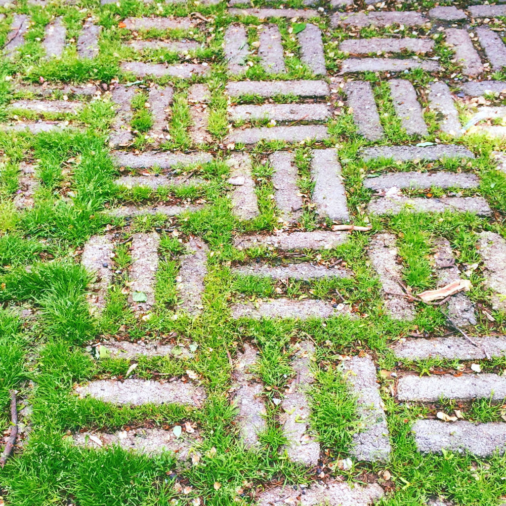 grass in a basketweave parquet pattern, outside prospect park on ocean parkway.