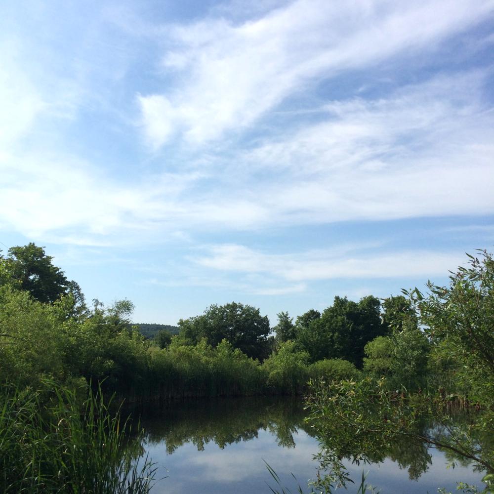 chatham-pond