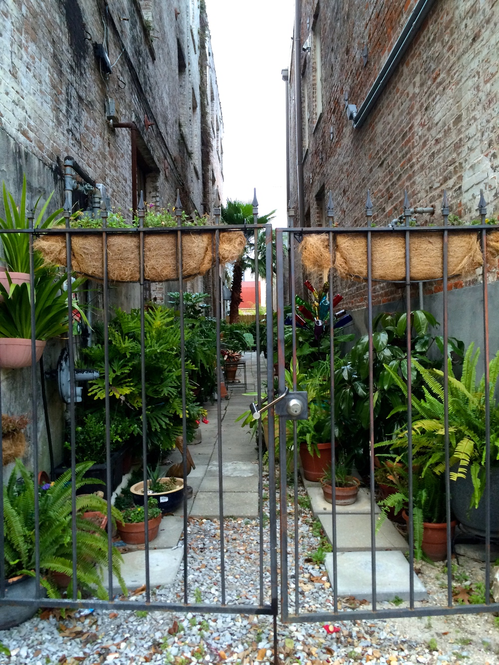 a green alleyway next to avery fine perfumery.