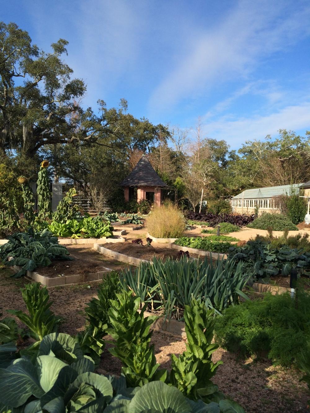 botanical-gardens-edible