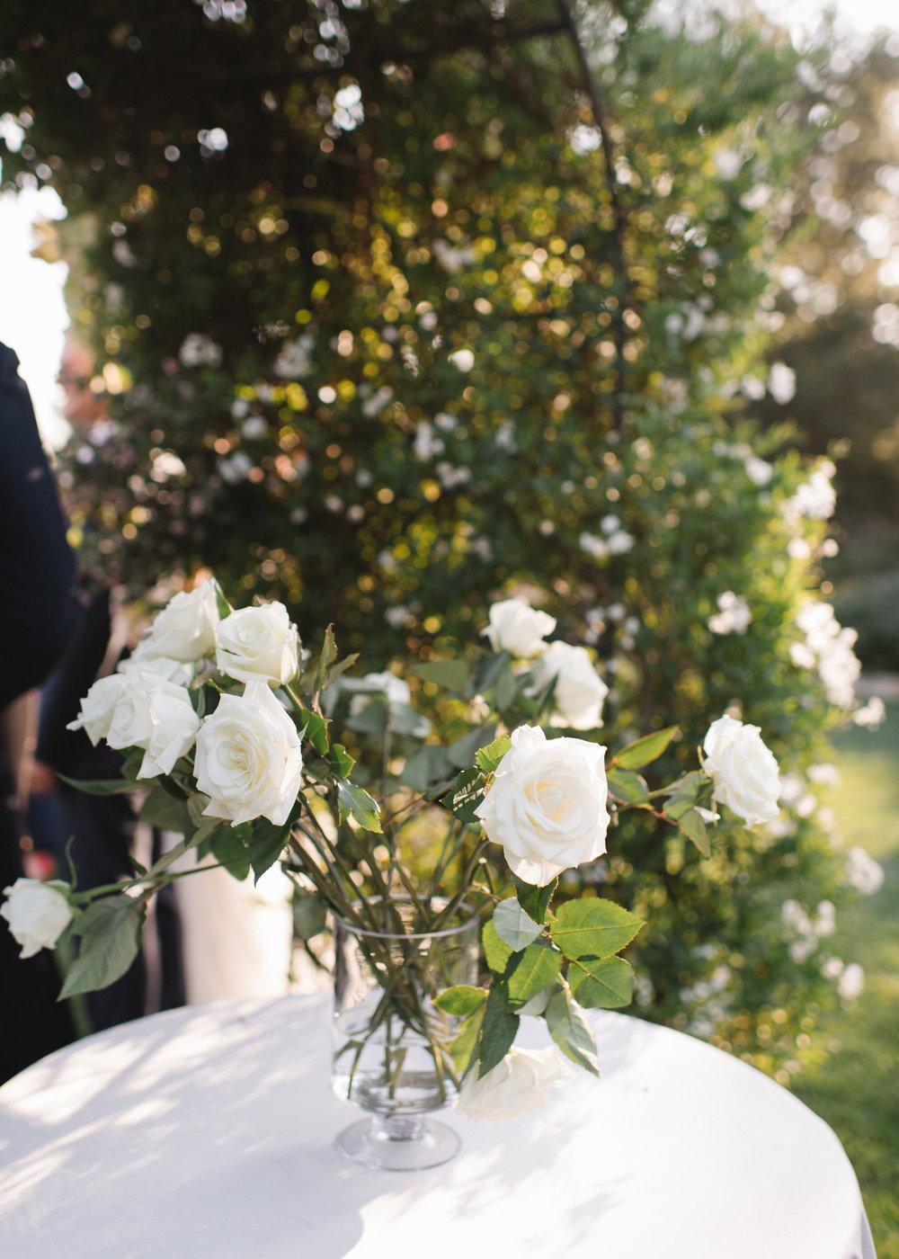Hayley+Drew241.jpg