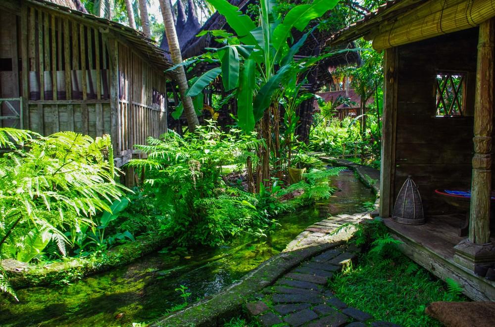 Ubud, Bali, Indonesia, 2012