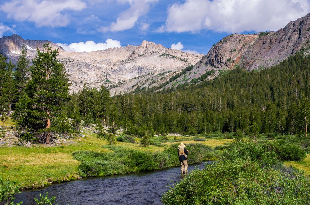 A fly fisherman casts in the morning light on Lee Vining Creek. Mono County, California