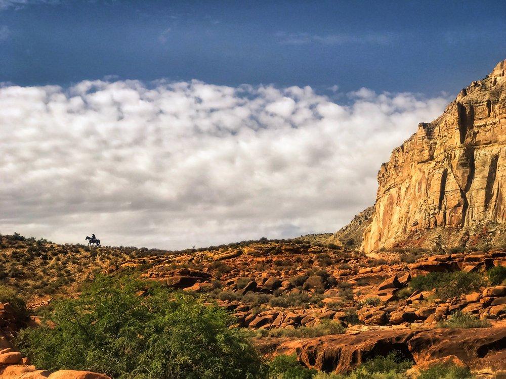 A Havasupai man rides toward the top of Havasu Canyon. Havasupai Indian Reservation