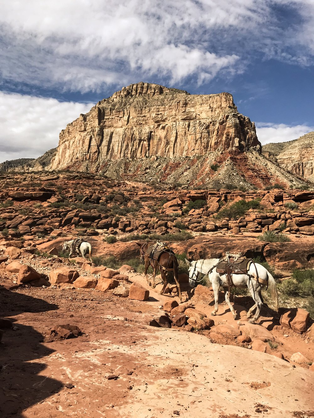 Havasu Canyon. Havasupai Indian Reservation