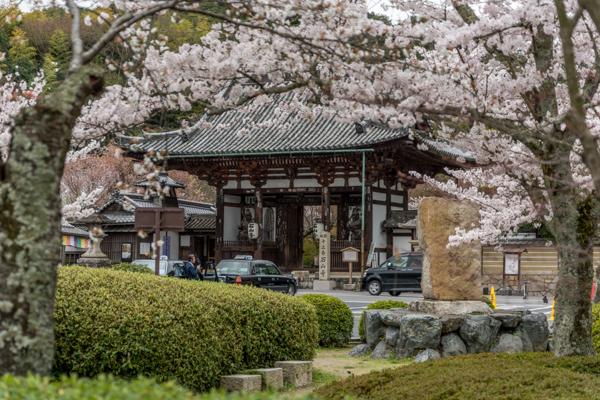 Ishiyama-dera entrance view