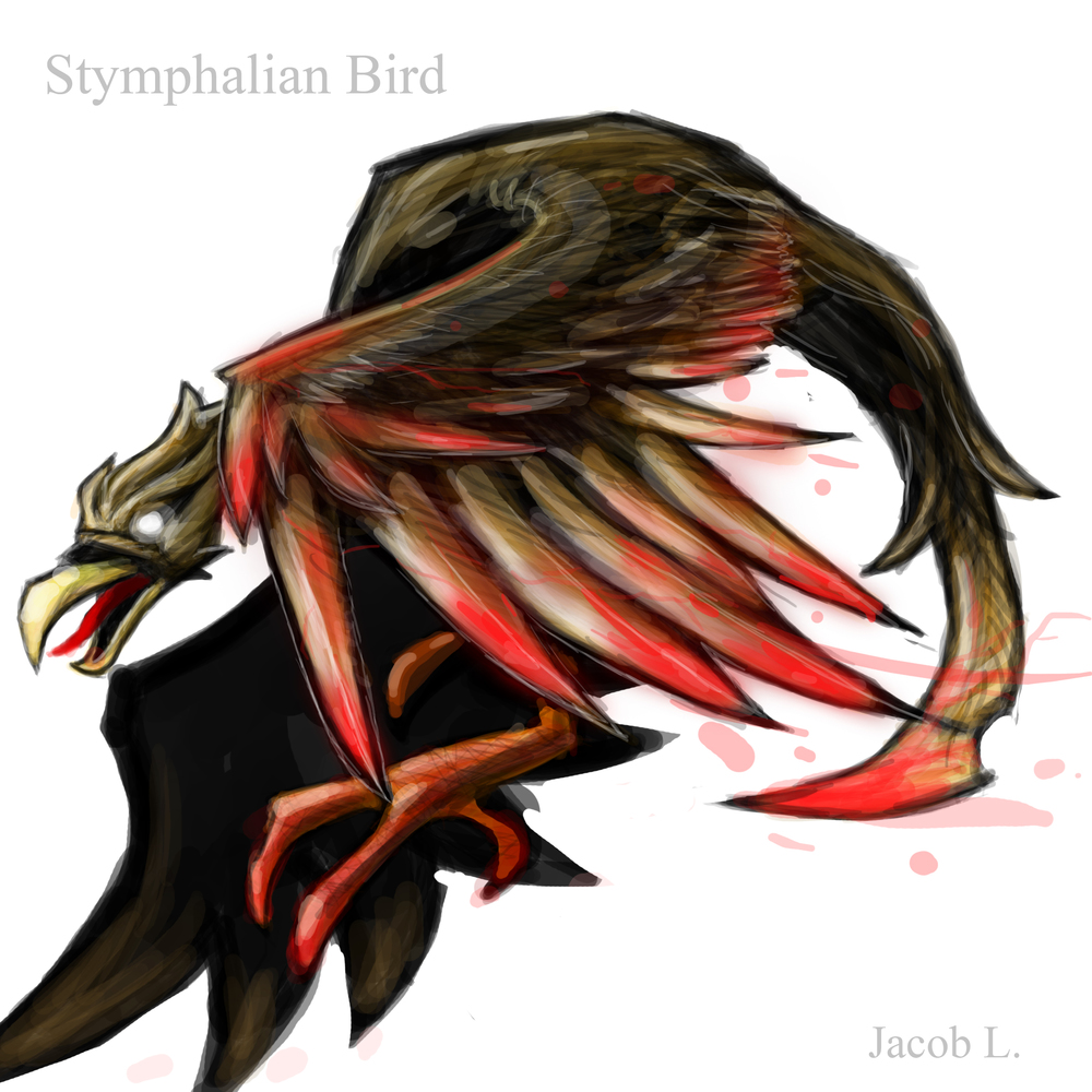 Stym_Bird_2_jacob.jpg