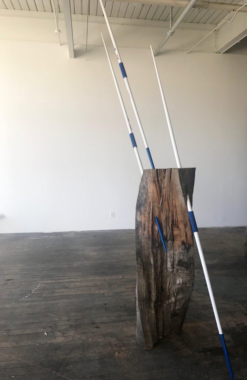 Blue Javelins