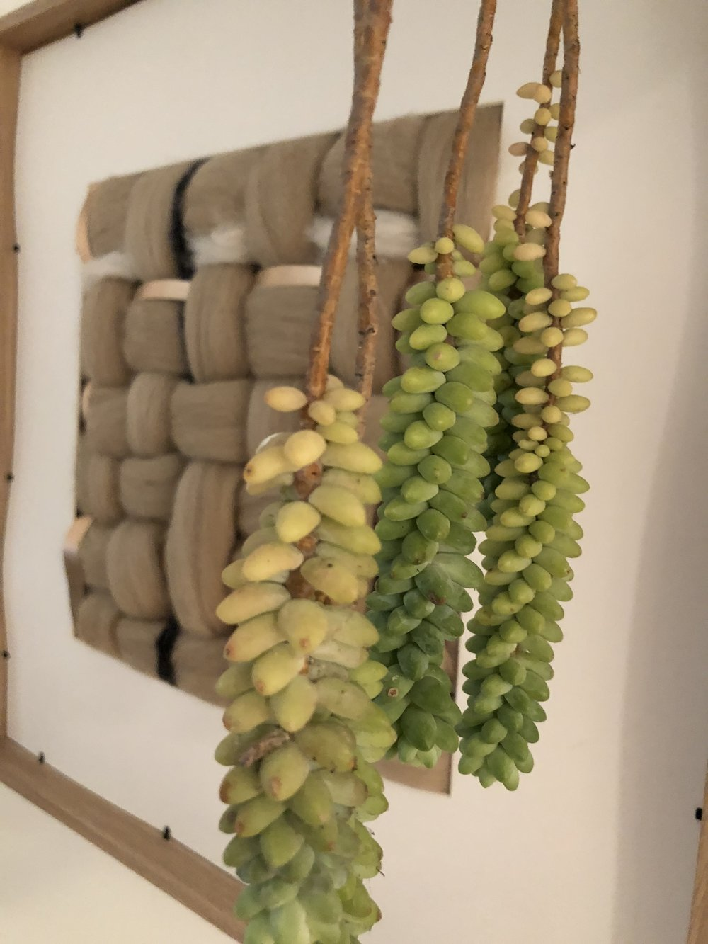 custom yarn wall art - Seven Sundays Studios