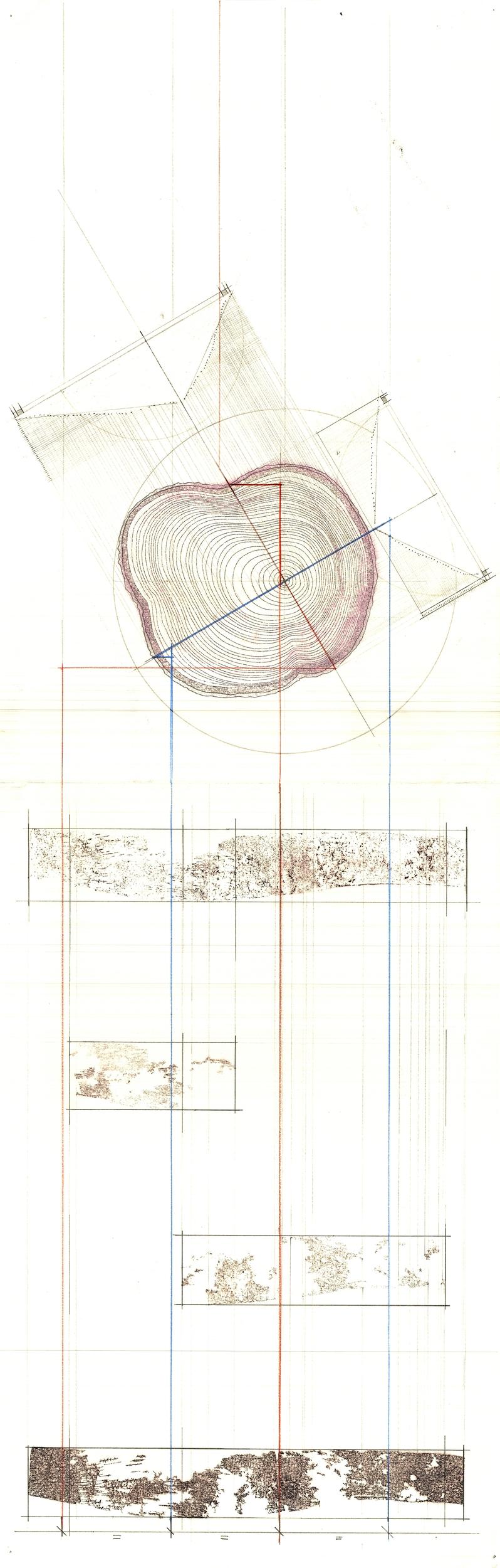 TreeScan002.jpg