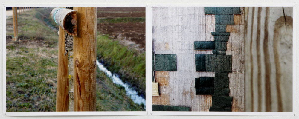 Untitled Diptych 1, from the Wood series, 2010