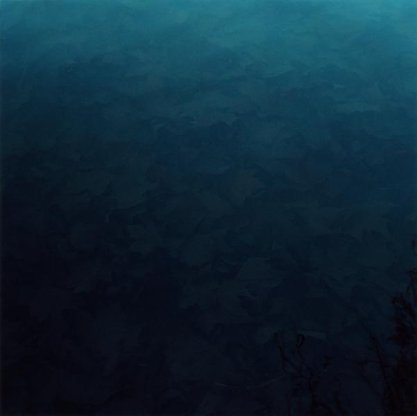 Submerged, 2010-2013