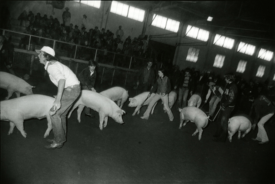 The Fort Worth Stock Show and Rodeo, 1974-1977