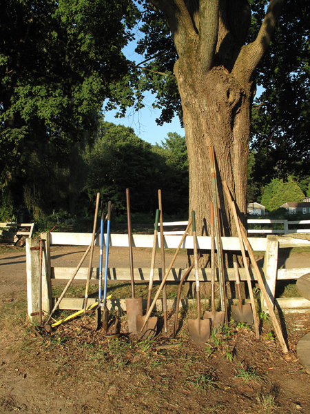 Garden Tools at 6:00 pm, Barberry Hill Farm, Madison, CT, August 2010