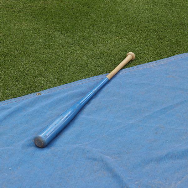Batting practice (Bat and tarp), Durham, NC, 2013