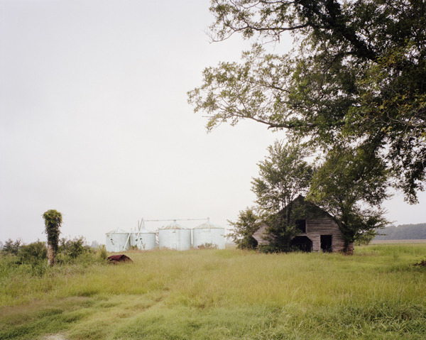 Abandoned farm near Elizabeth City, Camden County, North Carolina, 2009