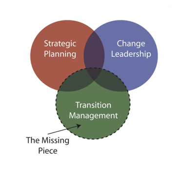 transition-management-venn.png