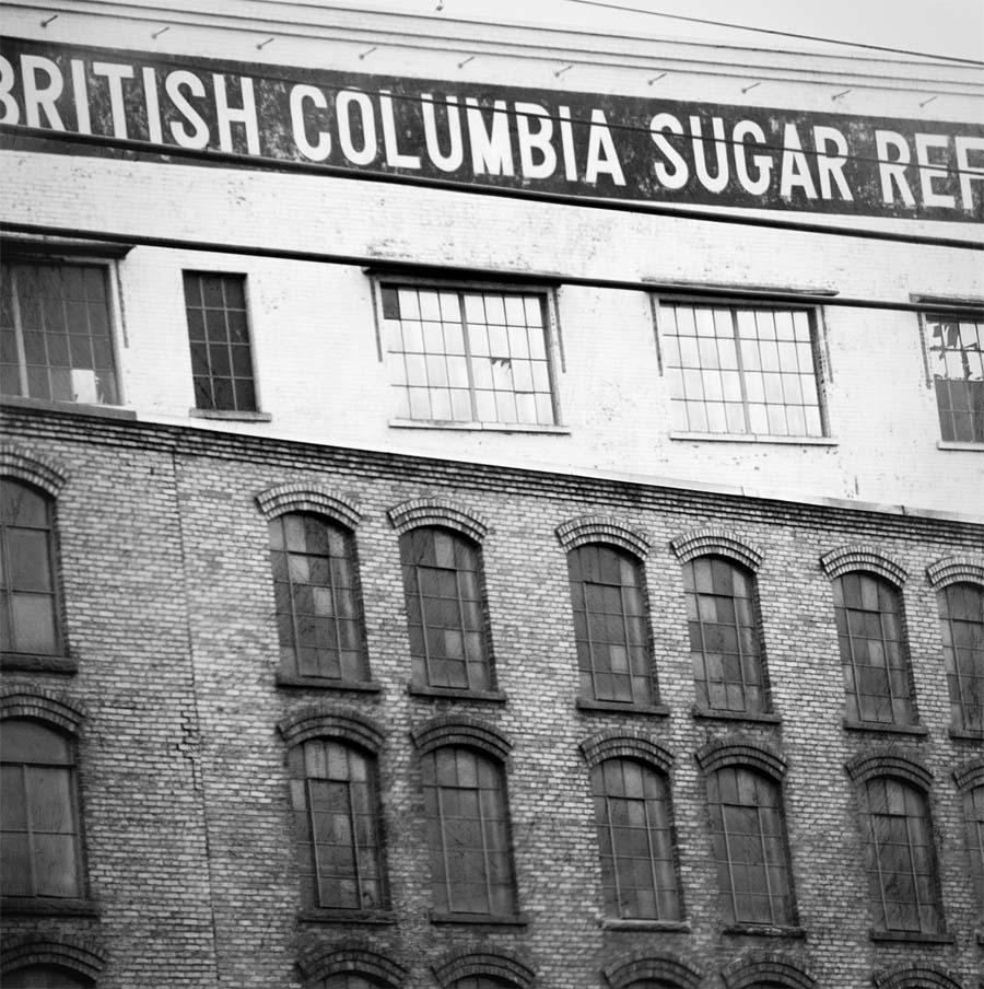 bc sugar