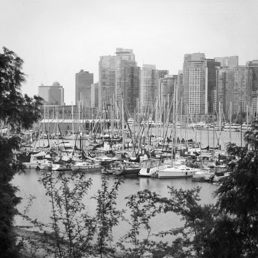 sailboats at coal harbour