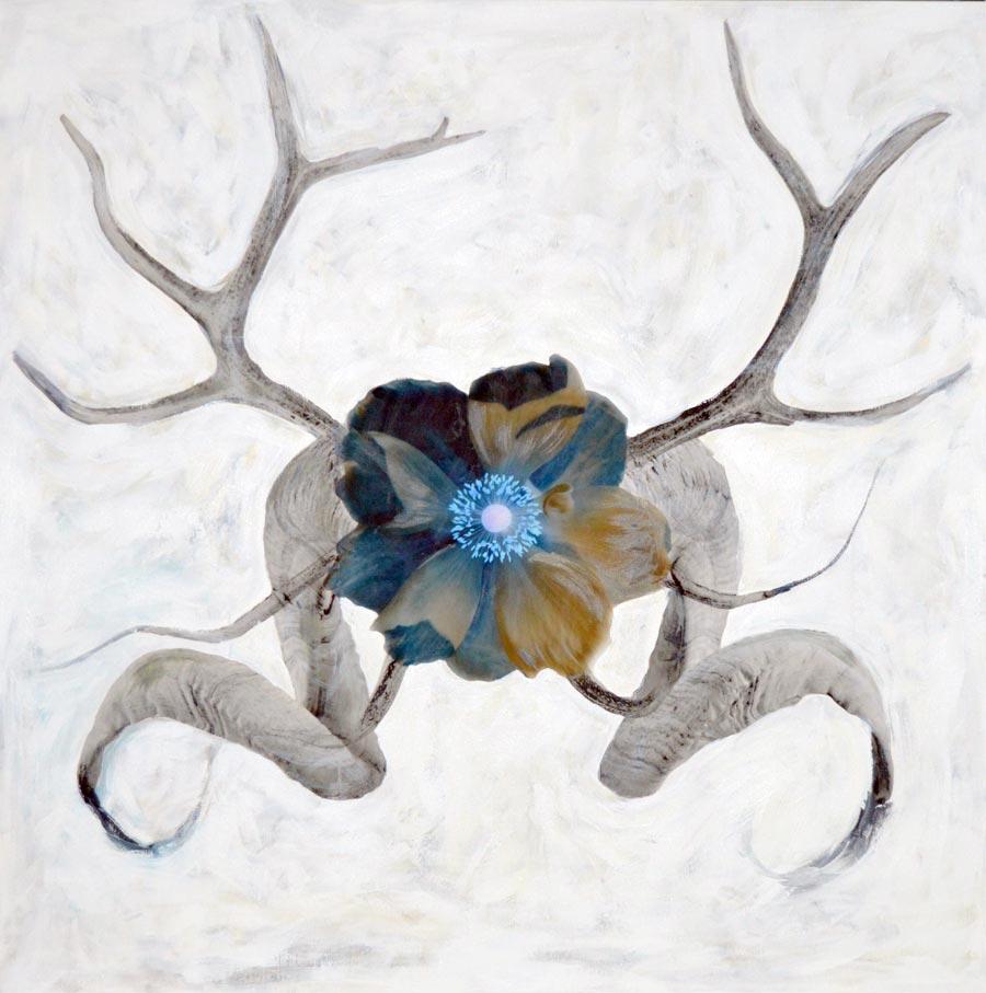 "buffalo and caribou - 36"" x 36"""