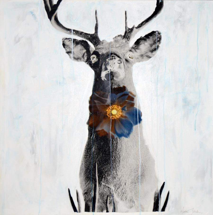 "stag - 36"" x 36"""