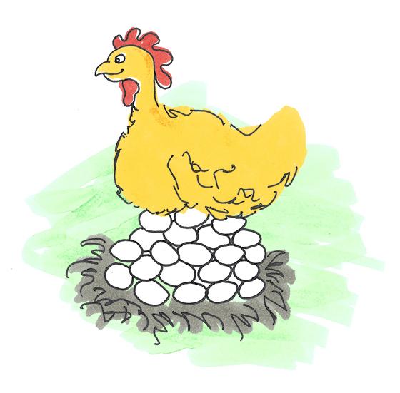 chicken-illustration-elenapotter.jpg