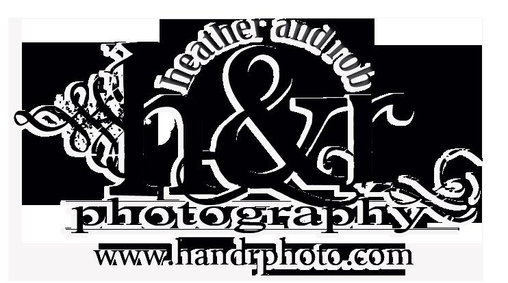 new_logo_2014_cleandeupBlackWITHDROPSHADOE.png
