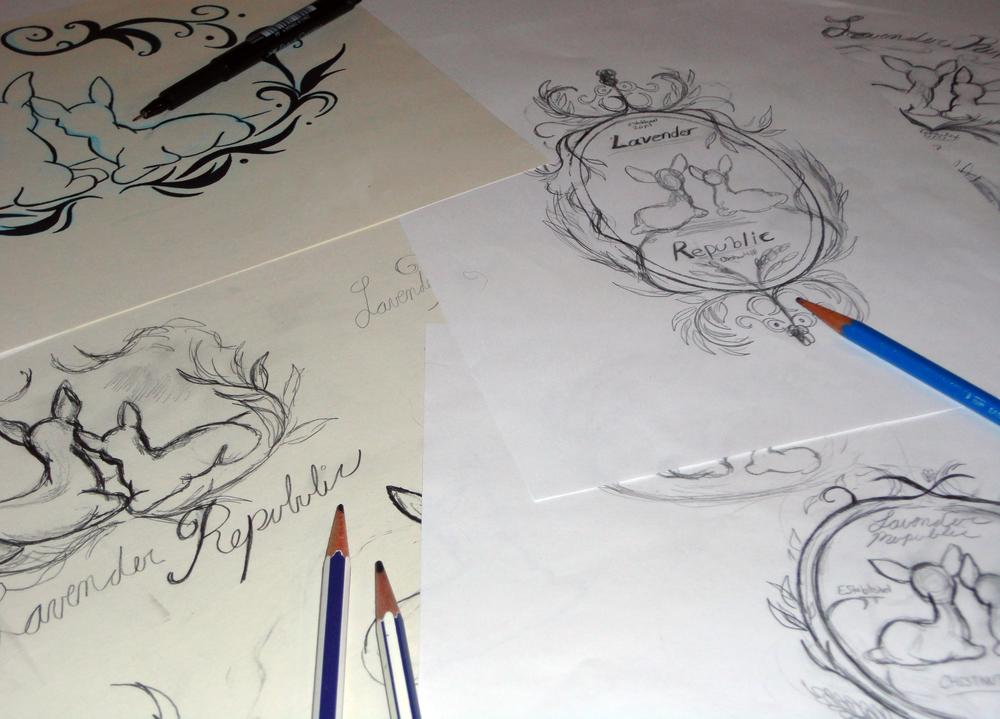 Lavender sketches.jpg