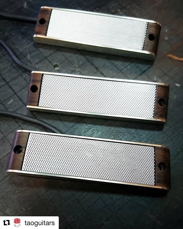 These beautiful #benedetti pickups will be attached soon to amazing piece of wood 😉! . . #firstofakind #taoguitars #boutiqueguitars #customguitars #handmade #guitar #masterpiece #guitarsdaily #guitarporn #guitarsofinstagram #geartalk #bespoke #knowyourtone #gearybusey #guitarselectric  #Repost @taoguitars with @get_repost ・・・ #new #transcestors #guitarpickups #singlecoils #benedettipickups #luthier #guitarmaking #customguitar #guitar #art #handcrafted #oneofakind