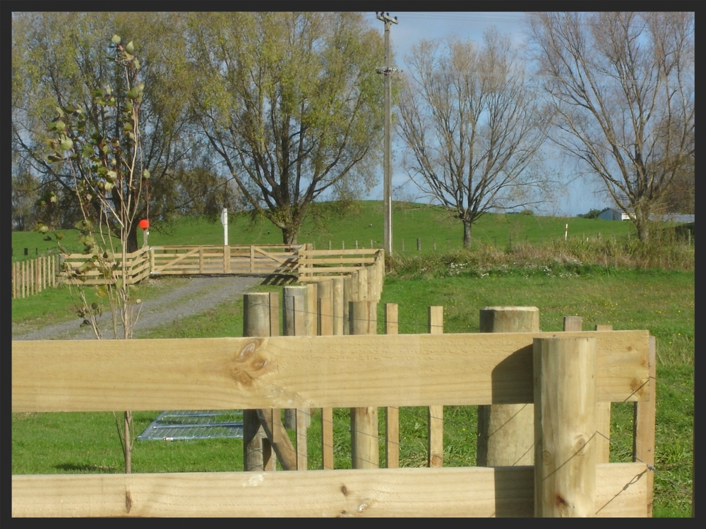 Post and rail, wooden gates and 8 wire battened fence.