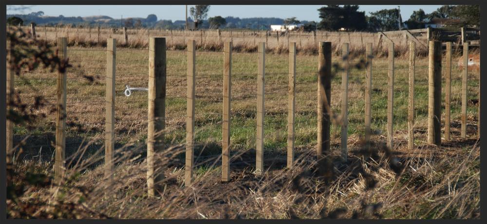 8 wire batten fence