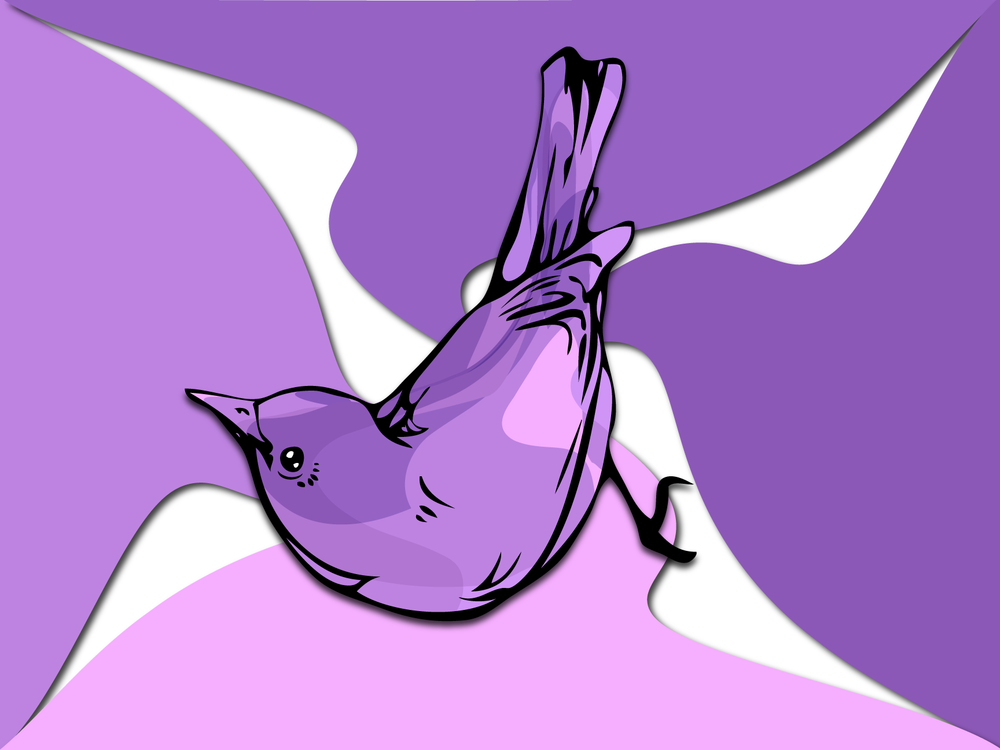 Bird-Bath1.png