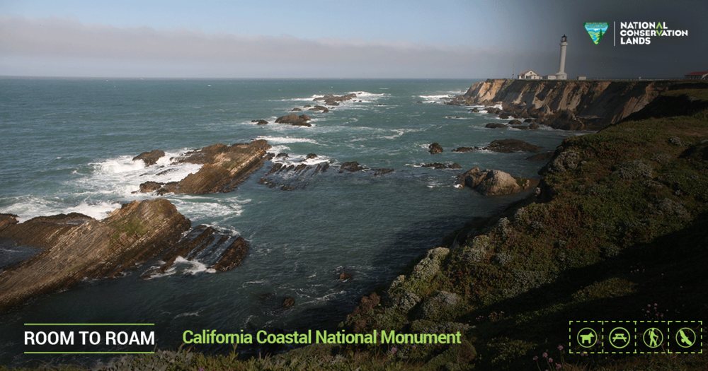 Conservation_Lands_Foundation_California_Coastal_RTR_1200x630.png