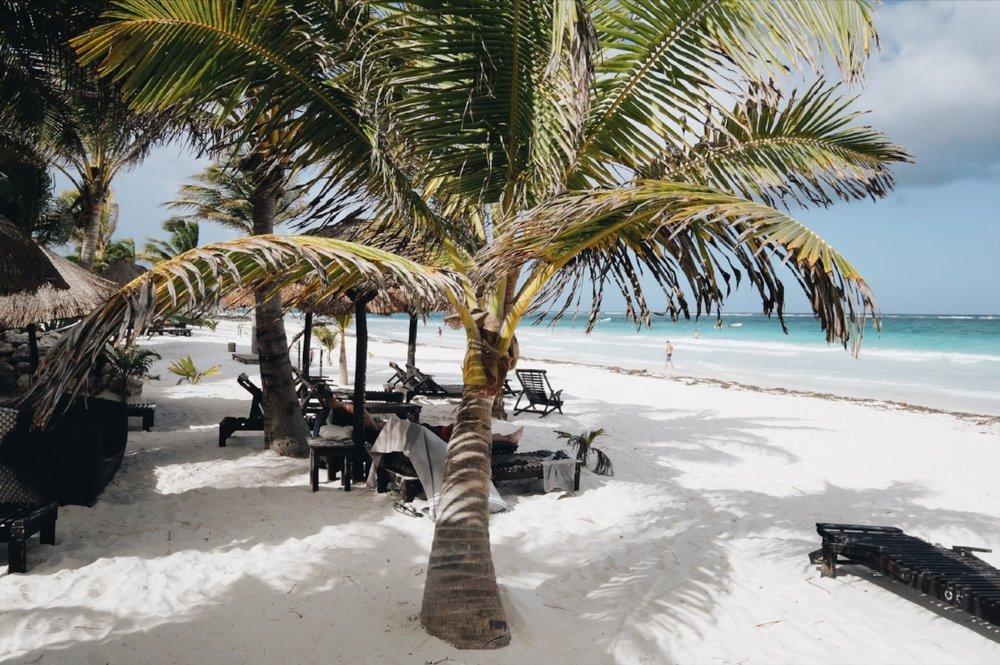 950d5-seesoomuch_beachreads1seesoomuch_beachreads1.jpg