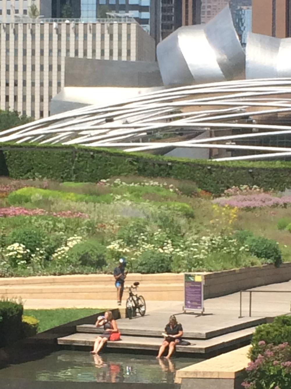 Vista que se tem do  Lurie Garden  quando se está no Art Institute.