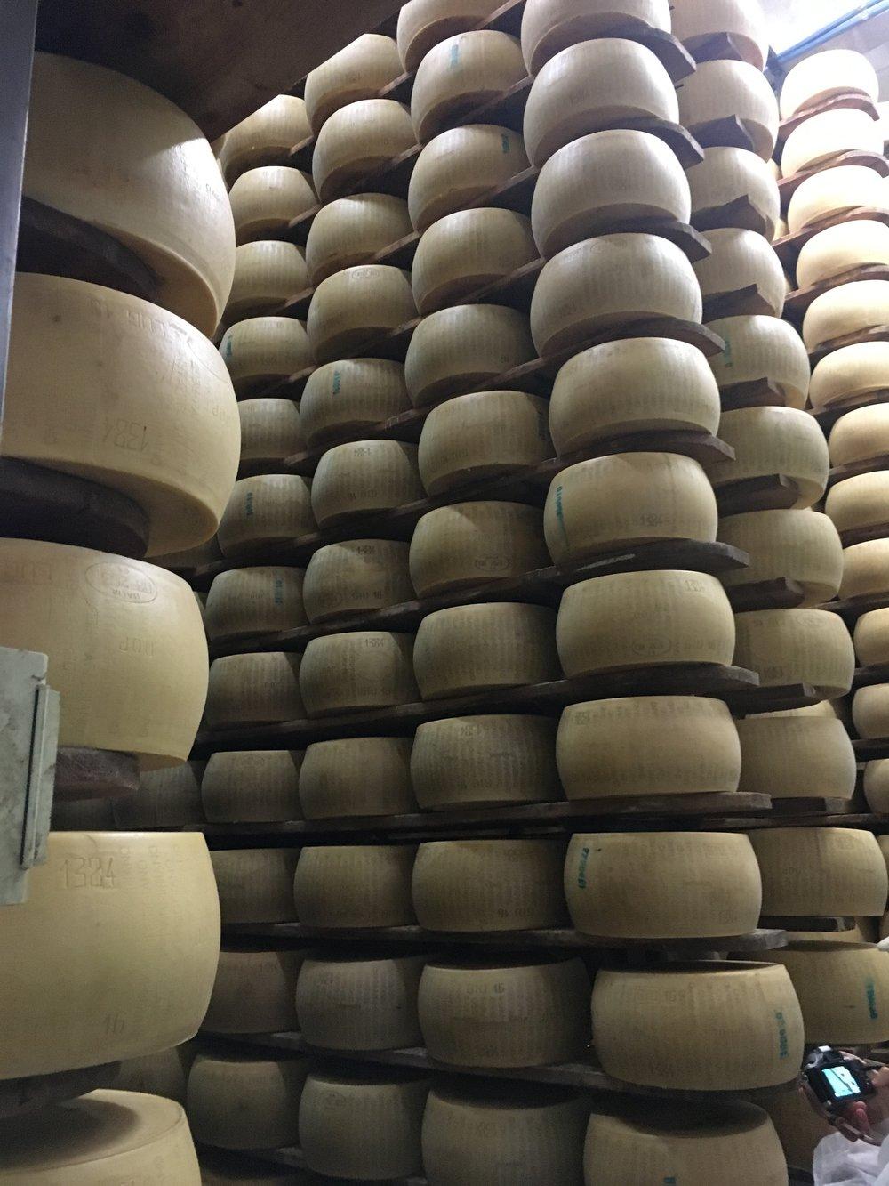 """Aqui, os queijos passarão pelo tempo mínimo de maturação, que é de 12 meses. Um máquina enorme passeia por estes corredores de tempos em tempos, virando cada roda de queijo ao contrário da posição original, tomando o cuidado de enxugar e limpar o excesso de umidade que transpira do queijo. Somente após este período é que os testes dirão se aquele queijo está bom para ser vendido como  Parmigiano Reggiano , ou se será vendido como parmesão comum, ralado ou vendido em pedaços. Caso não passe no teste, a casca do queijo é raspada, para que todas as informações de identificação de controle sejam removidas. Se o queijo for aprovado na inspeção, recebe o último selo - marcado a ferro quente - identificando que aquele queijo é de fato um dos que podem ser considerados """"o Rei de todos os queijos"""". Este processo é o que garante a Denominação de Origem do queijo. Abaixo um vídeo onde mostram como é o teste para saber se o queijo recebe o selo ou se terá as identificações raspadas e vendido de maneira diferente."""