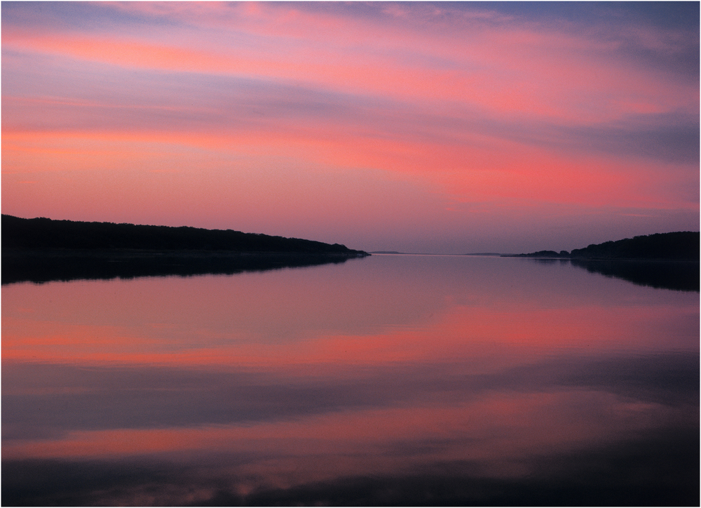 """Life is Eternal"" - Taken at dawn along Edgartown Great Pond, 1997."
