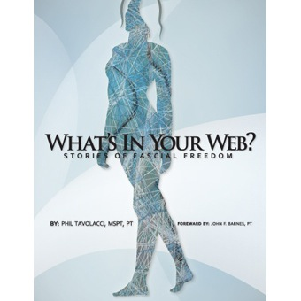Whats In Your Web  Phil Tavolacci