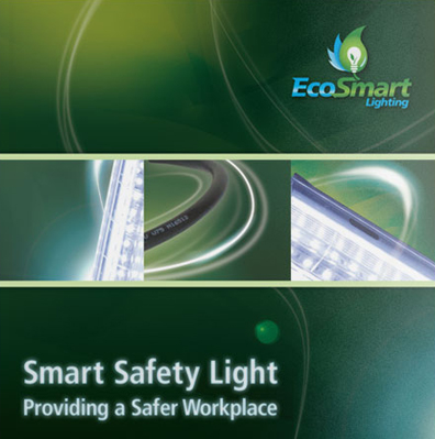 EcoSmart Lighting Book Design and Printing