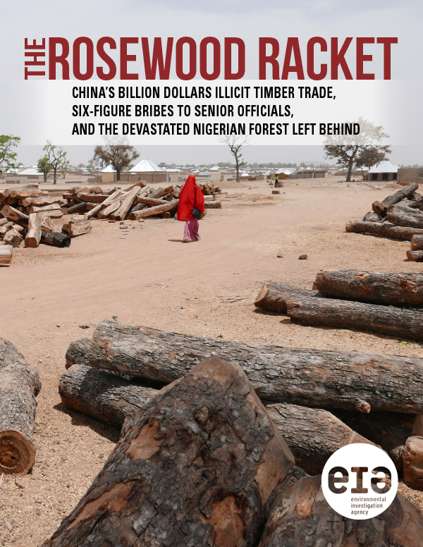 EIA Rosewood Racket in English and Chinese, Book design and publication