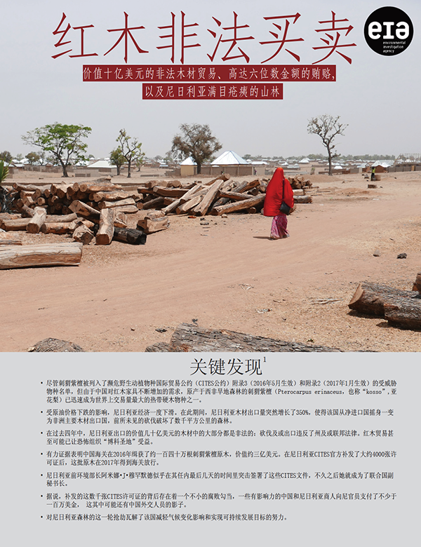 EIA Chinese version of report on illegal logging