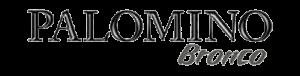 bronco-logo-300x76.png