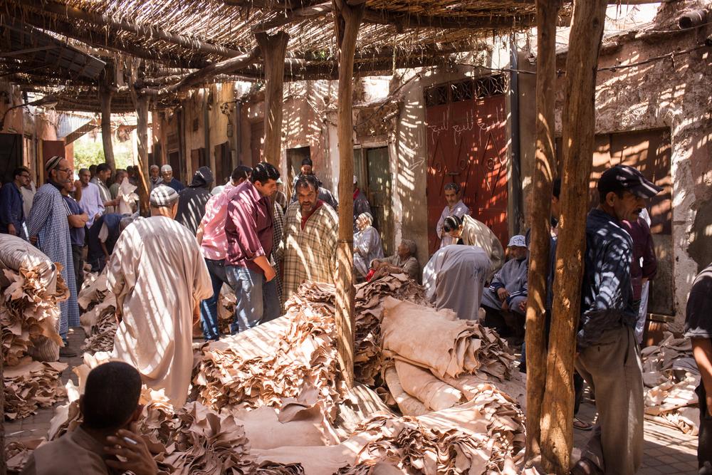 Eskogg_Morocco-11.jpg