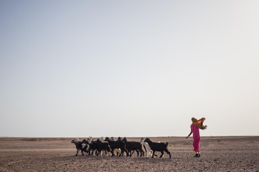 Eskogg_Morocco-47.jpg